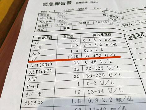 IMG_3802.JPG