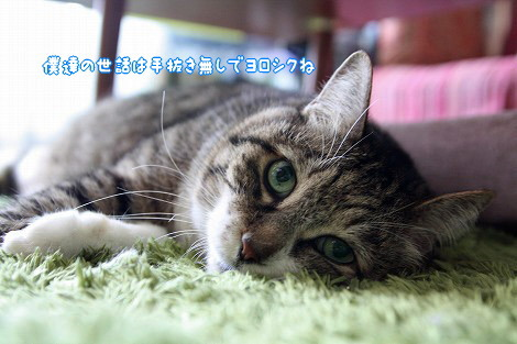 s-1610025924.jpg