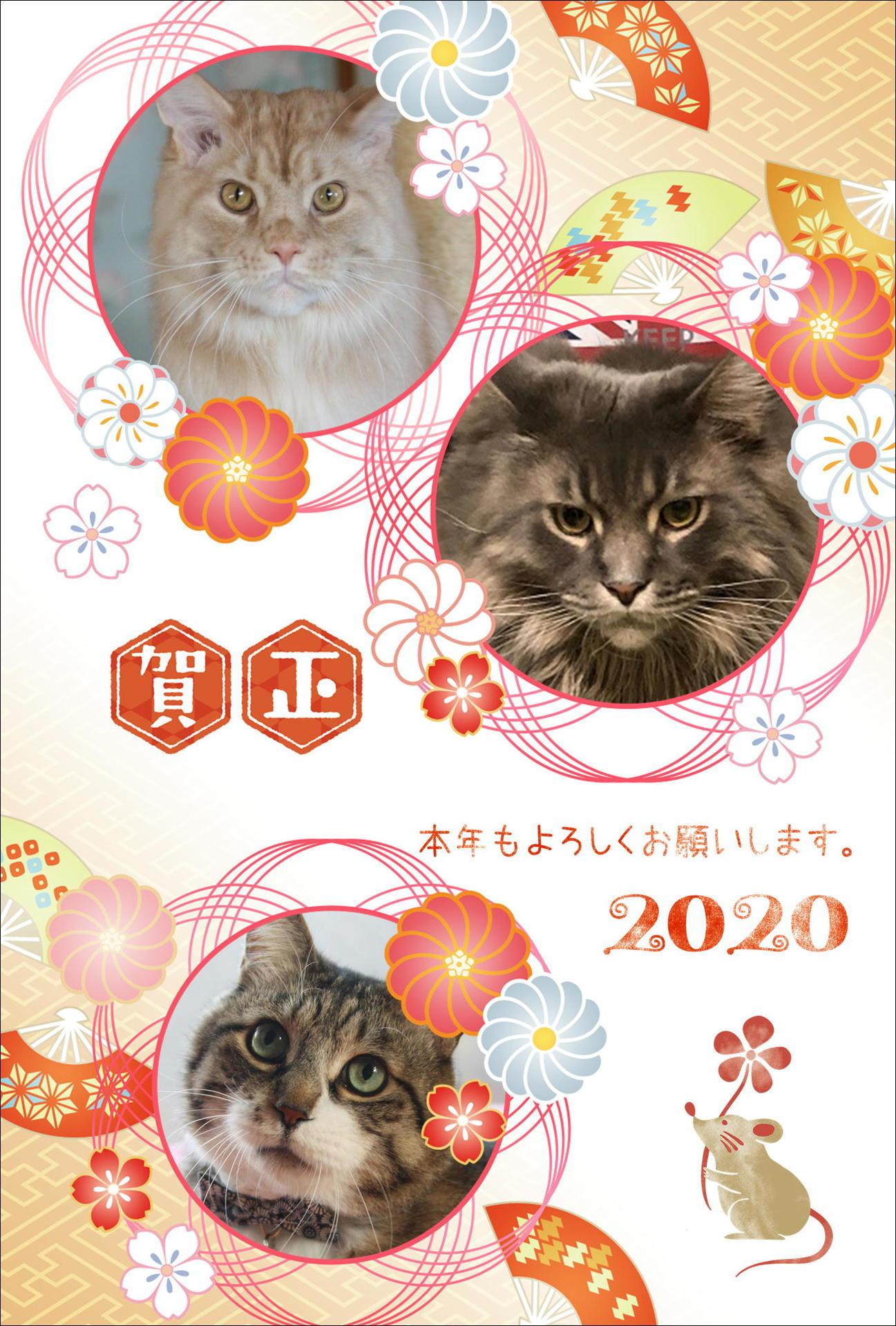 2020年賀Web用.JPG