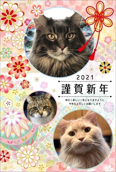 2021年ブログ用年賀状.JPG