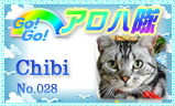 aloha-028.jpg