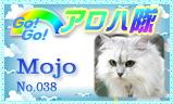 aloha-038.jpg