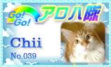 aloha-039.jpg