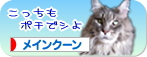 peko-banner03.jpg